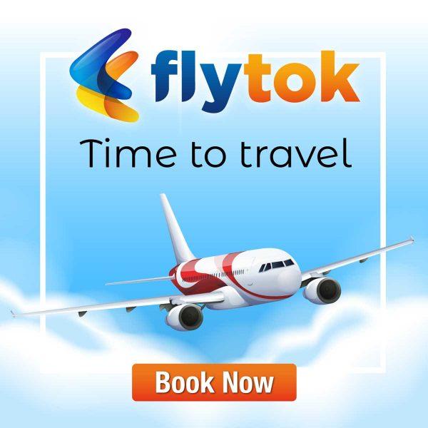 FlyTok Brand Name Logo