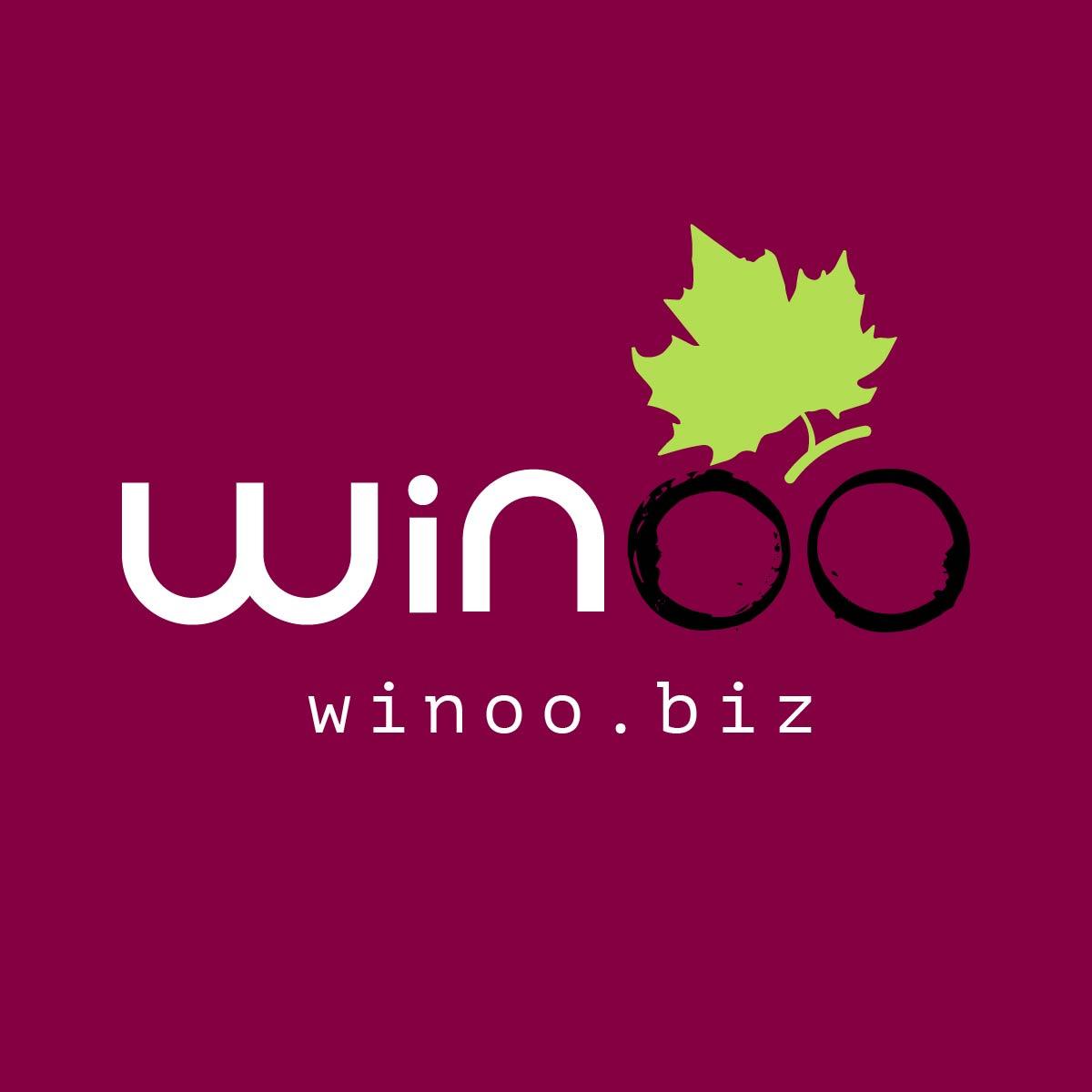 winoo - Brand design by Brandizle