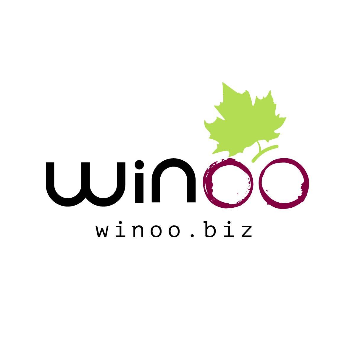 winoo logo - Brand design by Brandizle